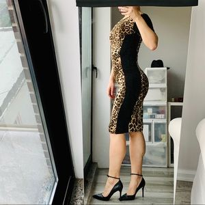 Warehouse Animal Print Leopard Bodycon Shape Dress